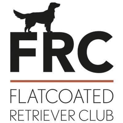 Flatcoated retriever club